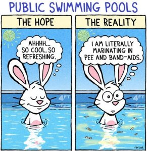 comics-expectation-vs-reality-swimming-pool-249641