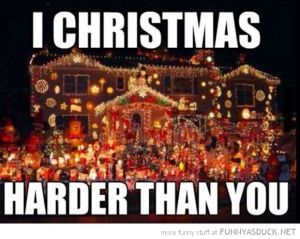 funny-pictures-lights-house-christmas-harder-than-you